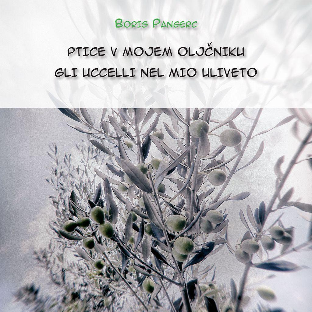 Ptice v mojem oljčniku / Gli uccelli nel mio uliveto (publikacija je večjezična)
